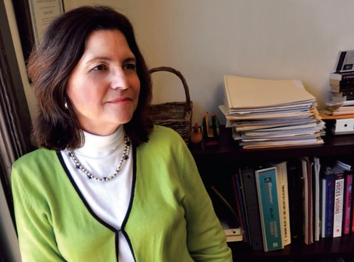 Dr. RoseAnna Mueller in her office at Columbia College Chicago.